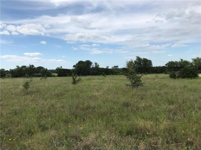 TBD W Amity Road, Salado, TX 76571 (MLS #19010723) :: Treehouse Real Estate