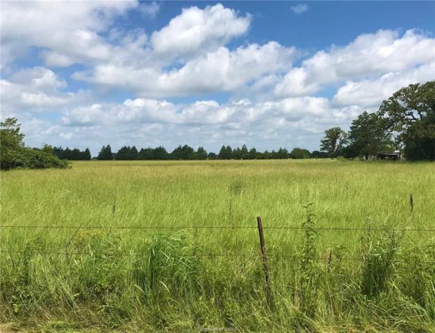 TBD County Rd 456, Normangee, TX 77871 (MLS #19010785) :: Chapman Properties Group