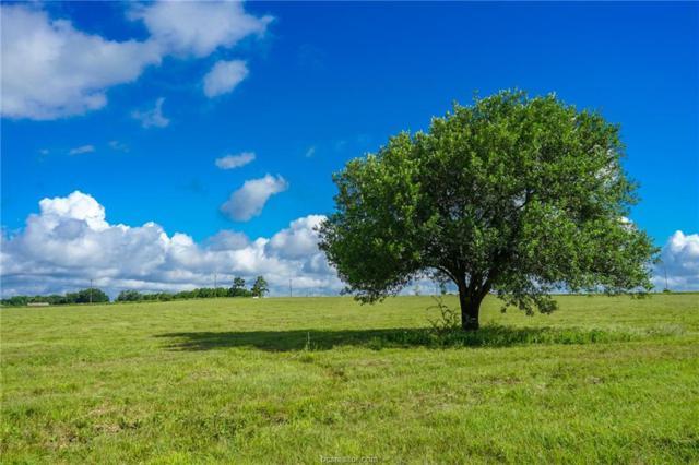 Lot 18 Fm 149, Anderson, TX 77830 (MLS #19010846) :: BCS Dream Homes