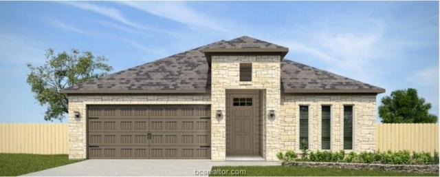 6309 Southern Cross Drive, College Station, TX 77845 (MLS #19010854) :: Chapman Properties Group