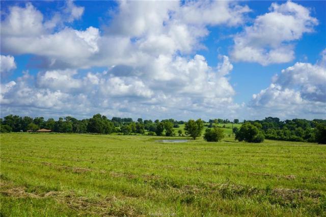 21 Fm 149 Road, Anderson, TX 77830 (MLS #19010870) :: BCS Dream Homes