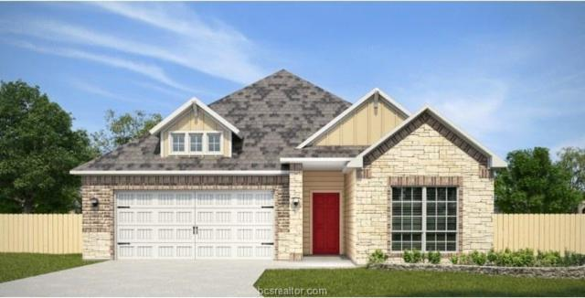 6303 Eldora Drive, College Station, TX 77845 (MLS #19010885) :: Chapman Properties Group
