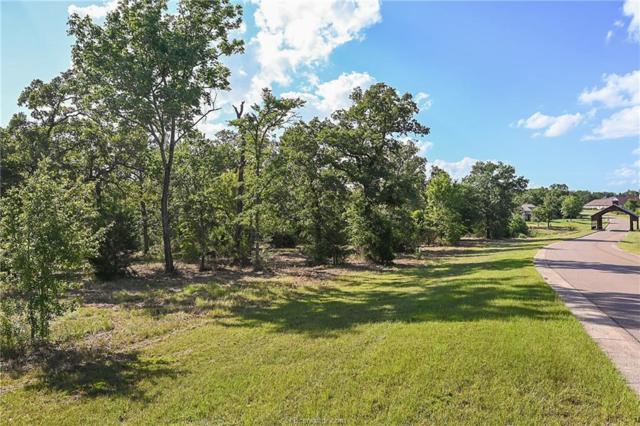 Lot 14 King Oaks Drive, Iola, TX 77861 (MLS #19010916) :: BCS Dream Homes