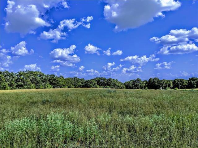 9999 Thompson Road, Calvert, TX 77837 (MLS #19011188) :: Treehouse Real Estate