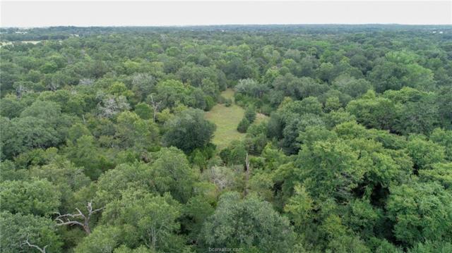 TBD Fm 60, Somerville, TX 77879 (MLS #19012257) :: Treehouse Real Estate
