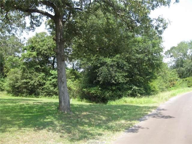 23 Lake Front Drive, Hilltop Lakes, TX 77871 (MLS #19012510) :: Treehouse Real Estate