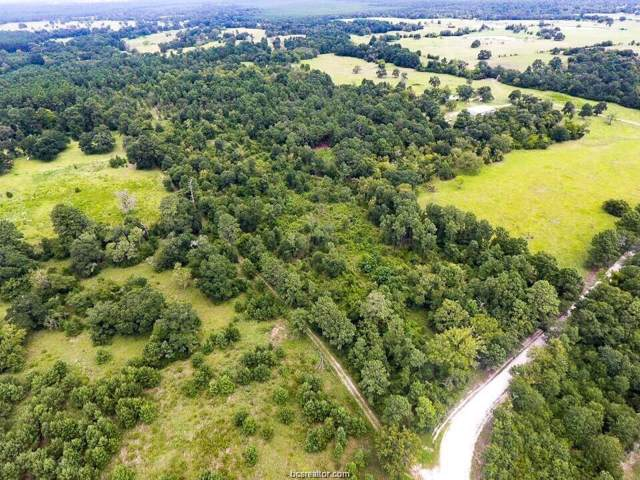 TBD County Road 227, Bedias, TX 77831 (MLS #19012578) :: Treehouse Real Estate