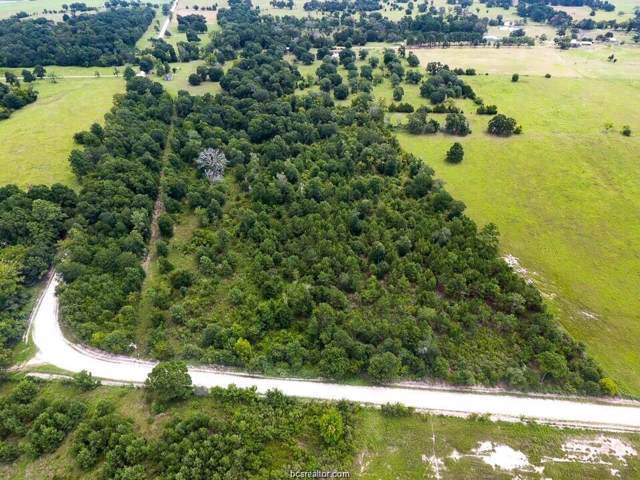 TBD County Road 227, Bedias, TX 77831 (MLS #19012579) :: Treehouse Real Estate