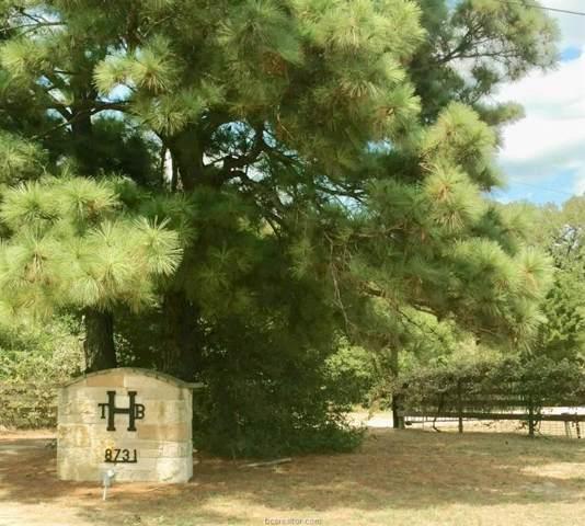 8731 E Hwy 79, Milano, TX 76556 (MLS #19012596) :: Treehouse Real Estate