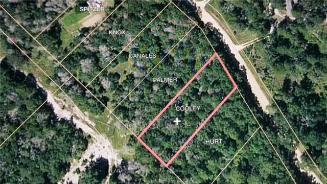 TBD Gideon Lincecum Lane, Other, TX 77835 (MLS #19012698) :: Treehouse Real Estate