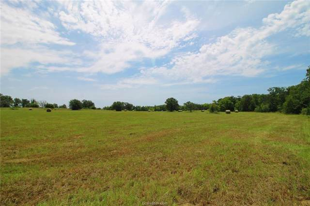 TBD 71 +/- AC Cr 346, Milano, TX 76556 (MLS #19012748) :: Treehouse Real Estate