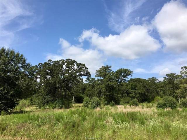 10161 Hampton Court, Iola, TX 77861 (MLS #19012834) :: The Lester Group