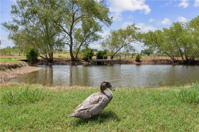 4838 Hwy 39, North Zulch, TX 77864 (MLS #19012844) :: Treehouse Real Estate