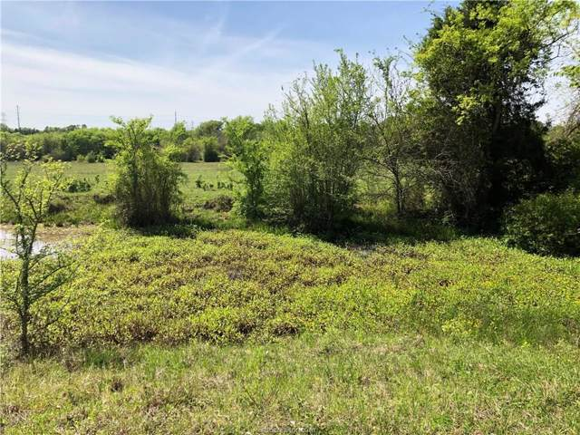 TBD County Road 220 Road, Anderson, TX 77830 (MLS #19014112) :: Treehouse Real Estate