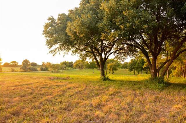 8300 Lone Star Rd, Other, TX 77880 (MLS #19014166) :: Cherry Ruffino Team