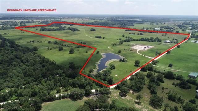 6145 County Road 185, Anderson, TX 77830 (MLS #19014203) :: BCS Dream Homes