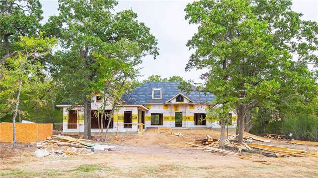 10771 Lonesome Dove Trail, Bryan, TX 77808 (MLS #19014278) :: Cherry Ruffino Team
