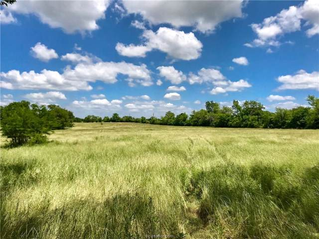 15818 Highway 21 Tract 4, North Zulch, TX 77872 (MLS #19014325) :: RE/MAX 20/20