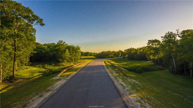 Lot 4/Block 2 Millican Meadows Circle, College Station, TX 77845 (MLS #19014378) :: RE/MAX 20/20