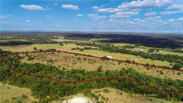 (+/- 65 acres) County Road 334, Caldwell, TX 77836 (MLS #19014411) :: RE/MAX 20/20