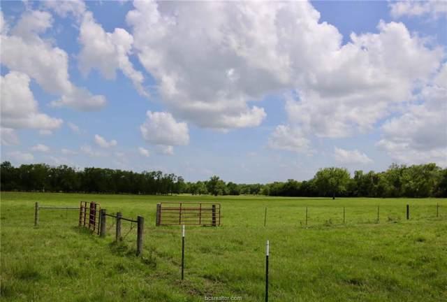 0025 County Road 185, Anderson, TX 77830 (MLS #19014506) :: RE/MAX 20/20