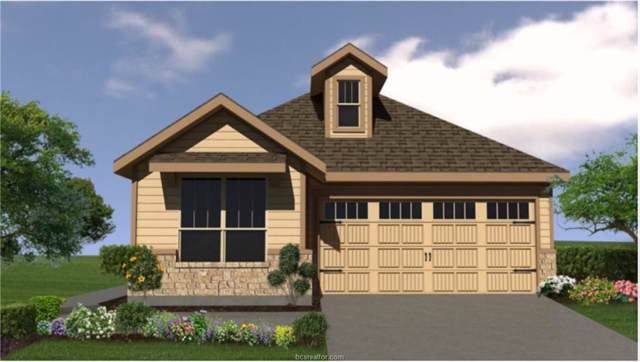959 Toledo Bend Drive, College Station, TX 77845 (MLS #19014521) :: RE/MAX 20/20