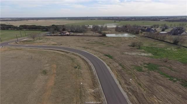 4264 Foxtail Court, Bryan, TX 77802 (MLS #19014639) :: Chapman Properties Group