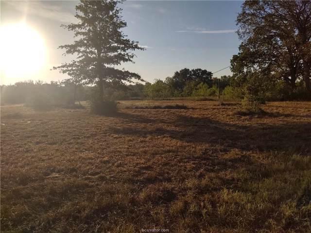 26124 Cr 131, Bedias, TX 77831 (MLS #19014703) :: Treehouse Real Estate