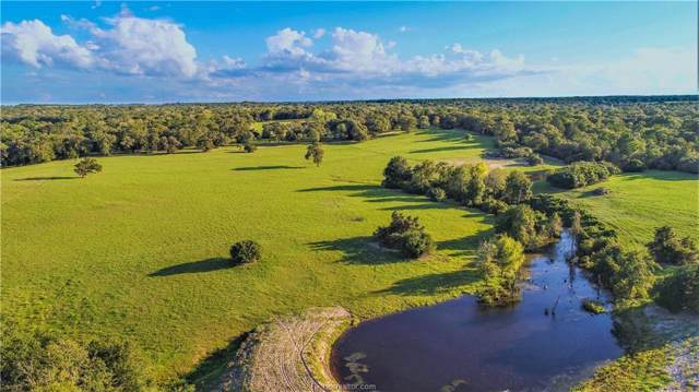 (+/-88 acres) Cr 332, Caldwell, TX 77836 (MLS #19014946) :: Treehouse Real Estate