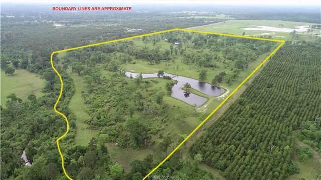 64.742 Acres Ron Walker Lane, Bedias, TX 77831 (MLS #19015031) :: Treehouse Real Estate