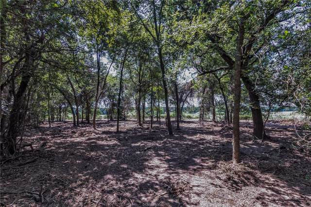 606 W Fm 979, Franklin, TX 77856 (MLS #19015187) :: Treehouse Real Estate