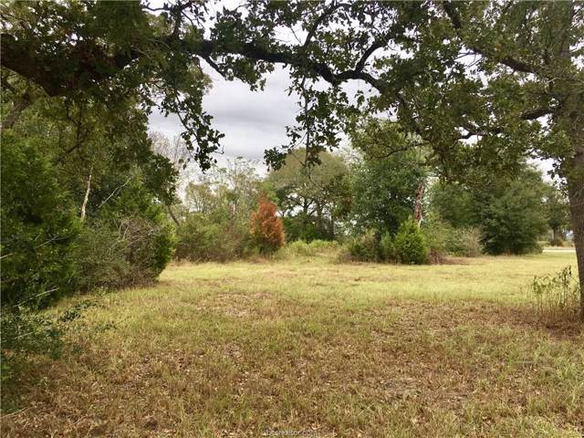 Lot 278 Leigh Court, Iola, TX 77861 (MLS #19015230) :: The Lester Group