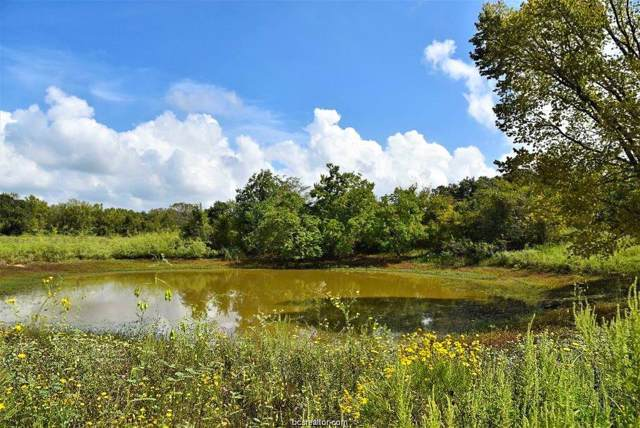 (+/-170 acres) Vaughn Lane, Hearne, TX 77859 (MLS #19015246) :: Treehouse Real Estate