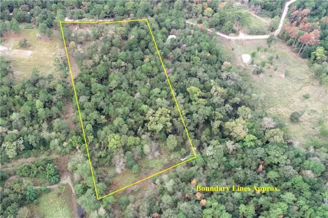 10758 Deer Ridge Road, Bedias, TX 77831 (MLS #19015512) :: Treehouse Real Estate
