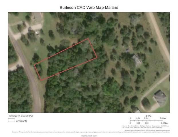 Lot 244A Mallard Street, Caldwell, TX 77836 (MLS #19016839) :: Treehouse Real Estate