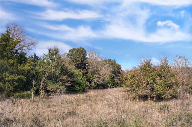 12676 Emu Lane, North Zulch, TX 77872 (MLS #19017089) :: Treehouse Real Estate