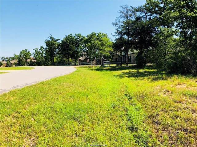 5287 Canvasback Cove, College Station, TX 77845 (MLS #19017186) :: RE/MAX 20/20