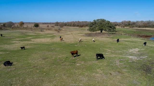 11 ACRES LOT 8 - Cr 201, Somerville, TX 77879 (MLS #19017393) :: Treehouse Real Estate