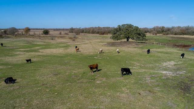 11.36 ACRES LOT 10 - Cr 201, Somerville, TX 77879 (MLS #19017395) :: RE/MAX 20/20