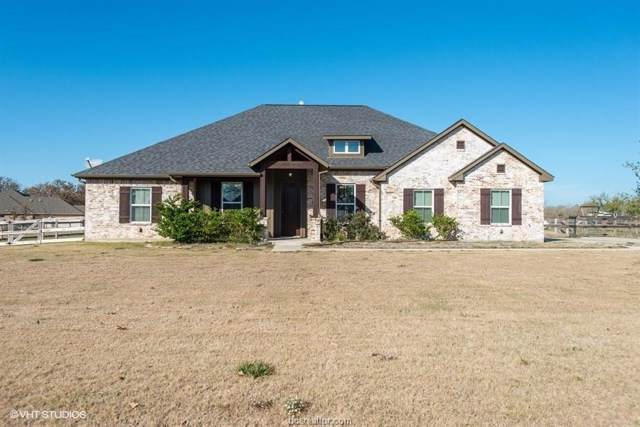 18067 Wigeon Trail Drive, College Station, TX 77845 (MLS #19017421) :: Chapman Properties Group