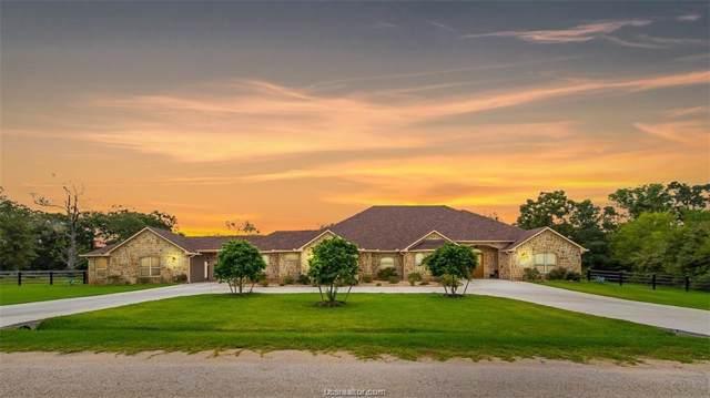 4367 Quiet Waters Lane, North Zulch, TX 77872 (MLS #19017442) :: BCS Dream Homes