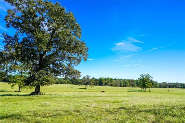 11567 Highway 90, Bedias, TX 77831 (MLS #19018583) :: NextHome Realty Solutions BCS