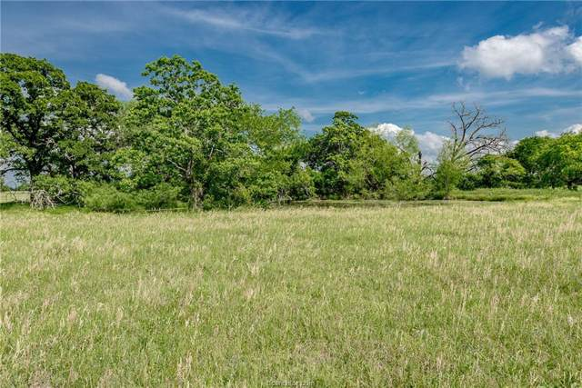 33.35 Acres N Old Springfield Road, North Zulch, TX 77872 (MLS #19018628) :: RE/MAX 20/20