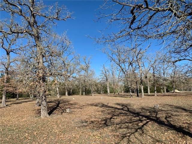 100 Birch, Somerville, TX 77879 (MLS #19018760) :: Treehouse Real Estate