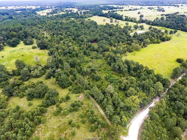 TBD County Road 227, Bedias, TX 77831 (MLS #20000042) :: Treehouse Real Estate