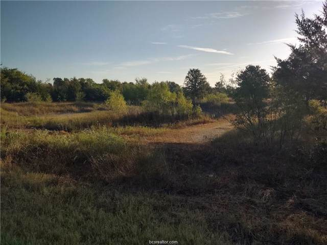 26124 County Road 131, Bedias, TX 77831 (MLS #20000773) :: BCS Dream Homes