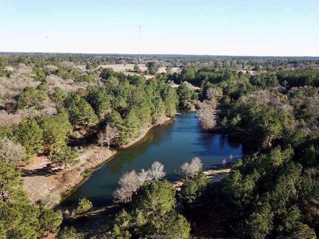 10949 County Road 308, Navasota, TX 77868 (MLS #20000887) :: Treehouse Real Estate