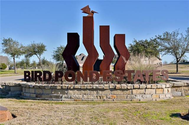 5209 Ruddy Duck Drive, College Station, TX 77845 (MLS #20000939) :: Chapman Properties Group