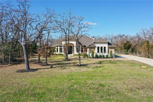 17292 Catori Cove, College Station, TX 77845 (MLS #20002802) :: Treehouse Real Estate