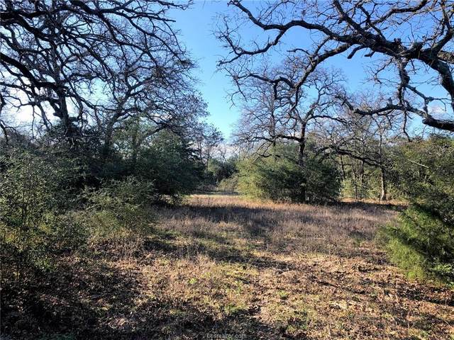 3241 CR 390 S Little Mississippi Cem County Road, Franklin, TX 77856 (MLS #20002860) :: The Lester Group
